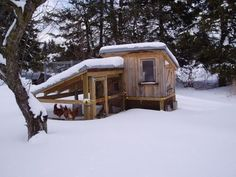10 tips for raising chickens in winter.How you can keep chickens and coop warm during cold weather.
