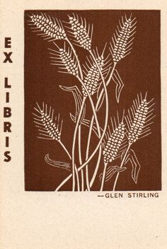 Glen Stirling wheat. These came in a box of 50.-Judith Walker's Collection