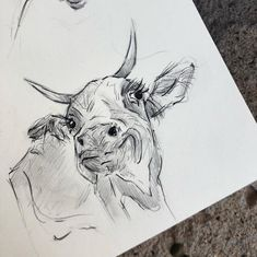 Art Drawings Sketches Simple, Animal Sketches, Animal Drawings, Cute Drawings, Cow Sketch, Psychedelic Art, Art Portfolio, Art Sketchbook, Acrylic Painting Canvas