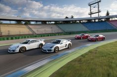 Porsche Cayman GTS, Cayman GT4, 911 Carrera GTS und 911 GT3  = 1.630 PS