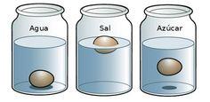 ¿Qué es la densidad de los líquidos? Los objetos sólidos que tiene menos densidad que el agua flotan en su superficie, y también lo hacen... Stem Science, Easy Science, Teaching Science, Science For Kids, Science And Nature, Science Experiments For Preschoolers, Science Activities, Indoor Activities For Kids, Science Fair Projects