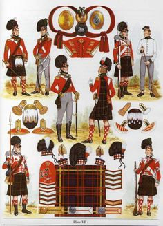 NAP- Britain: British 79th Regiment of Foot (Cameron Highlanders) 1810-1815, by…