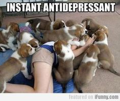Instant Antidepressant