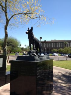 The Arizona Law Enforcement Canine Memorial located at Wesley Bolin Memorial Park in Downtown Phoenix.