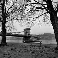 erkaphoto's photo on Instagraminstagram.com Chain bridge / Lánchíd , Budapest ! #wow #today #instagood #instamood #instaplus #instagrammers #photoftheday #photooftheday #blackandwhite #winter #awesome #danube #duna #hungary #love #bridge ##budapest #beautiful #morning #fog  http://siposotto.tumblr.com/post/71008549086/erkaphotos-photo-on-instagram-instagram-com