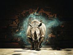 29 Best Rhino Render images in 2018 | Urban Planning, Architectural
