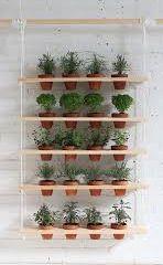 pots in shelves-635