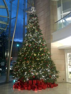 25ft atrium tree Decorated in Red & Gold & a few lights!