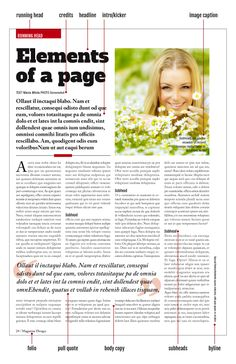 Elements of a Magazine Page