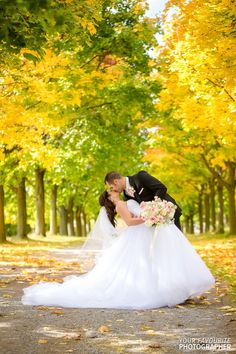 Groom dips the bride in the middle of a laneway of autumn trees Autumn Trees, Party Photos, Formal Wedding, Looking Stunning, Banquet, Garden Wedding, Dips, Paradise, Groom