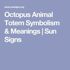 Octopus Animal Totem Symbolism & Meanings | Sun Signs