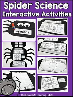 Spider Science Booklet - Tunstall's Teaching Tidbits