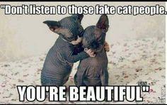 LOL  Mais non faut pas écouter les gens qui disent que t'es pas beaux! Hahaha