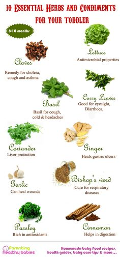 10 Essential herbs and spices for your baby