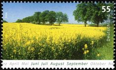 German Stamps, Flora Garden, Felder, Topiary, Science And Nature, Postage Stamps, Around The Worlds, Beautiful, Natural