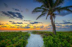 Delray Beach Sunrise with Coconut Tree.   Photo courtesy of Kim Seng | CaptainKimo.com