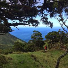 Highlights of Hiking on the Azores Islands | Via Stop Having a Boring Life Blog | 3/10/2014 To say these islands are beautiful would be an understatement, same goes if I were to say they were peaceful when in fact they are serene. There are nine islands in this archipelago and I had the pleasure of vising Sao Miguel, S. Jorge, Faial and Pico; they are all offer similar scenery but with their own unique vibe. #Portugal