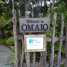 Omaio Gardens - appointment necessary for entry and for morning tea/afternoon tea/lunch. No eftpos facilities. Old Trees, Names With Meaning, Auckland, Childhood Memories, Coastal, Country, Afternoon Tea, Planting, Goat