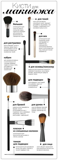 Infographic: 12 Makeup Brushes - I& Buying .- Инфографика: 12 кистей для макияжа – Я Покупа… Infographic: 12 Makeup Brushes – I Buy - Korean Makeup Look, Korean Makeup Tips, Korean Makeup Tutorials, Asian Makeup, Make Up Tutorial Contouring, Eyeliner Tutorial, Bronze Makeup, Korean Make Up, Makeup Revolution