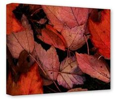 Gallery Wrapped 11x14x1.5  Canvas Art - Fall Tapestry