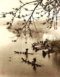chinese photography