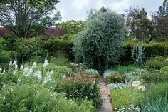 Flower or vegetable, these perfectly arranged plots inspire and delight.