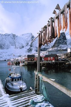 Drying fish for winter food