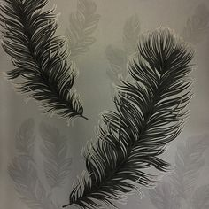 Arthouse Sirius Wallpaper - Gunmetal An elegant feather design with textured black feathers with silver glitter highlights on a smooth metallic gunmetal grey background. Feather Wallpaper, Copper Wallpaper, Black Feathers, Peacock Feathers, Glitter Highlight, Silver Glitter, Metallic, Stunning Wallpapers, Feather Design