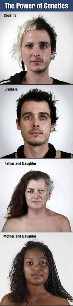 The power of genetics.