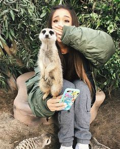 Ariana Grande as me.  I adore meerkats so much!!  This is precious!
