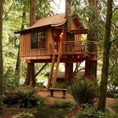 treehouse masters pete nelson - Google Search
