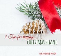We don't stress over the perfect gift and we don't over-extend ourselves financially trying to buy memories. What we do is look for ways to keep Christmas simple.