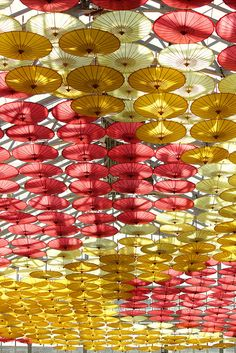 Umbrella roof in conservatory, closeup. Window Display Retail, Window Displays, Umbrella Decorations, Umbrella Wedding, Backyard Pool Designs, Conservatory, Umbrellas, Frames On Wall, Lanterns