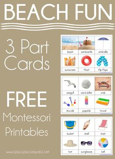 BBeach Fun Nomenclature Printables ~ Free Montessori 3 Part Cards Lesson Plans For Toddlers, Preschool Lesson Plans, Preschool At Home, Free Preschool, Preschool Science, Preschool Writing, Preschool Themes, Science Activities, Summer Activities