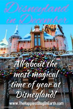 Disneyland in December