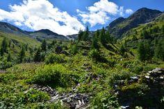Summer came to Alps. Author-Tereza Večerková
