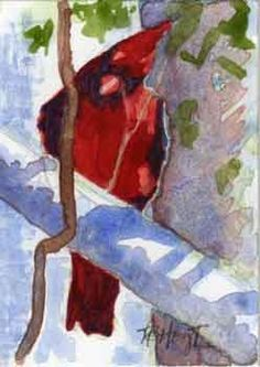 Art Cardinal, watercolor painting of red bird, painting by artist V. Bridges Hoyt