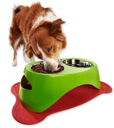 Cool new pet feeder line lets you mix & match to create a unique color and style combo for your pet's feeding area!