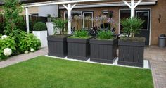 Great planters for the garden. Love Garden, Dream Garden, Home And Garden, Outdoor Landscaping, Backyard Patio, Small Gardens, Outdoor Gardens, Plantation, Garden Planters