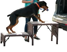 Pet Gear FreeStanding Foldable Pet Stair Chocolate >>> Visit the image link more details.