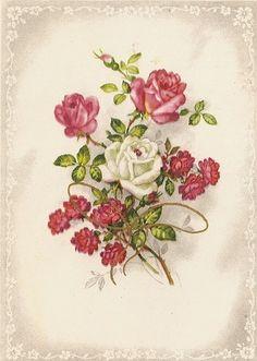 Botanical Flowers, Vintage Ephemera, Flower Wallpaper, Botanical Illustration, Vintage Images, Decoupage, Clip Art, Printables, Birthday