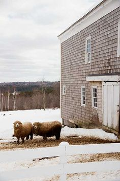 Classic Barns of Maine | Sense of Place - Yankee Magazine