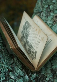 A truly good book teaches me better than to read it. I must soon lay it down, and commence living on its hint. What I began by reading, I must finish by acting. Henry David Thoreau
