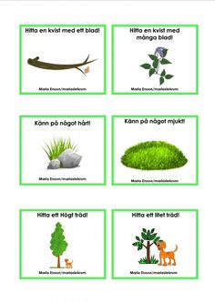 Uppdragskort-Skogen/matematik Educational Activities For Kids, Outdoor Activities For Kids, Preschool Games, Math For Kids, Yoga For Kids, Toddler Preschool, Preschool Crafts, Kids Learning, Maths In Nature