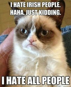 Grumpy Cat Classics (16 Pics)