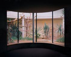 dennis didinger - berlin zoo