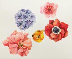 시간이 없으니...하루에 한송이 . . #꽃#꽃스타그램#꽃그림#그림#그리기#수채화#아네모네#수국#장미#식물#아트북#드로잉#일러스트#셀스타그램#셀피 #leegreeem#flower#flowerstagram#instadraw#coloring#painting#watercolor#instadaily#instadraw#daily#drawing#illust#illustration#selfie
