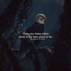 Positive Quotes : There are times when alone is the best place to be. - Hall Of Quotes True Quotes, Words Quotes, Motivational Quotes, Inspirational Quotes, Sayings, Qoutes, Favorite Quotes, Best Quotes, Heartfelt Quotes