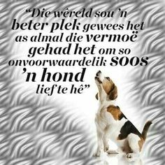 ' n Hond se liefde Afrikaans Quotes, Uplifting Quotes, Language, Love You, Girly, Motivation, Pets, Blue, Lady Like