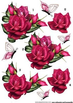 Step by step beautiful roses and butterflies
